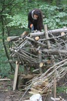 prikaz prve stranice dokumenta Wood Aurox in process